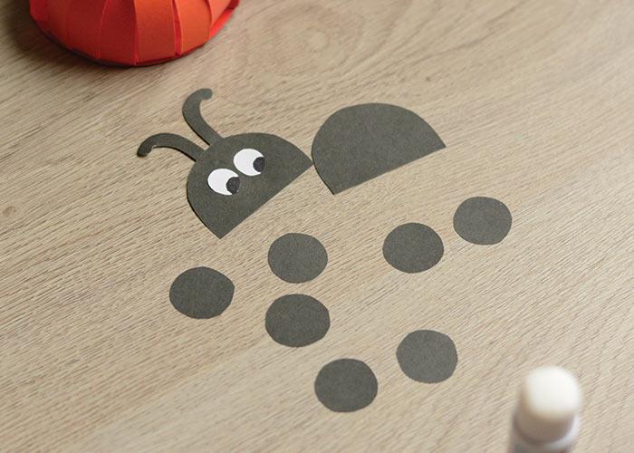 Ladybug details