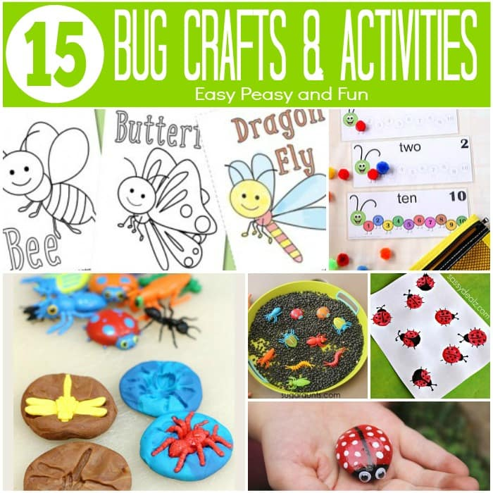 15 Bug Crafts and Activities