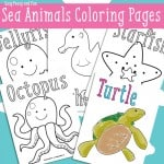 Ocean and Sea Animals Coloring Pages {Free Printable}