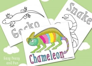 Reptile Coloring Pages Free