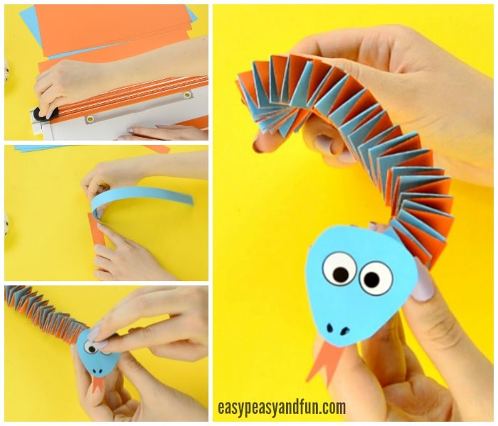 Adorable Accordion Paper Snake Craft