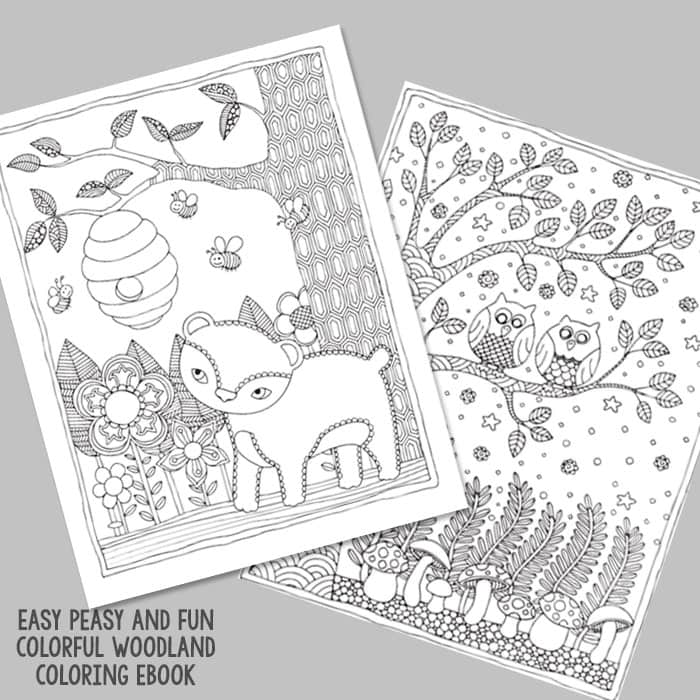 Bear And Owls Coloring Pages For Grown Ups
