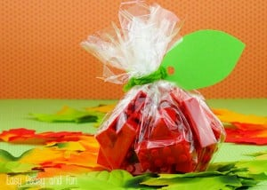 LEGO Apple Treat Bag