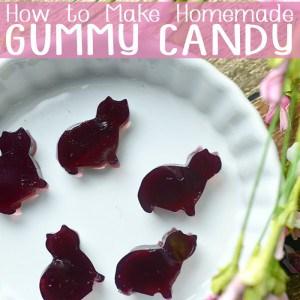 How to Make Gummy Candy – Homemade Grape Gummies