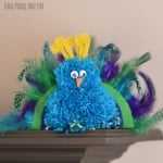 Pom Pom Peacock Craft