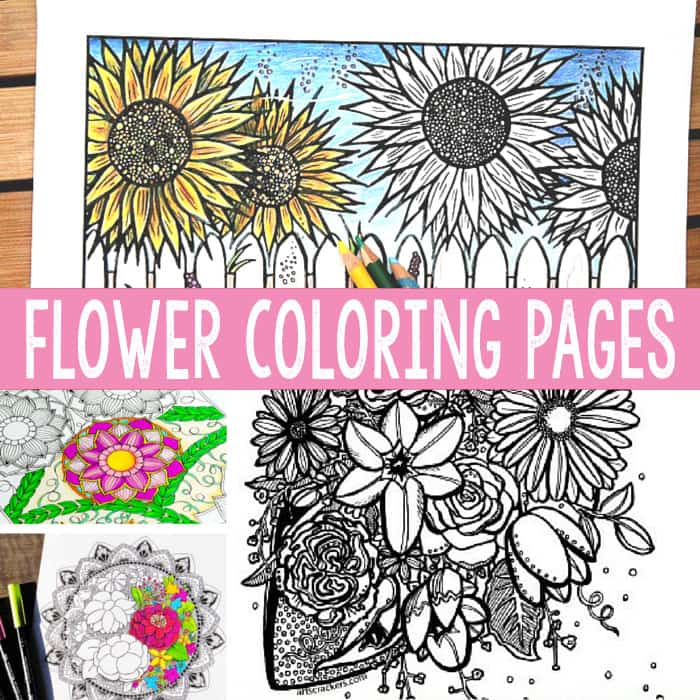 flower coloring pages for adults - Free Printable Flower Coloring Pages For Adults