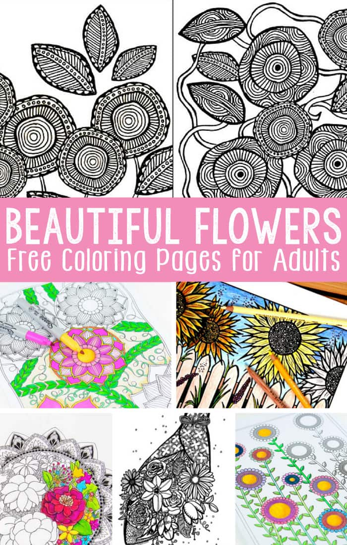 graphic relating to Flower Coloring Pages for Adults Printable identify Totally free Printable Flower Coloring Web pages for Older people - Very simple Peasy