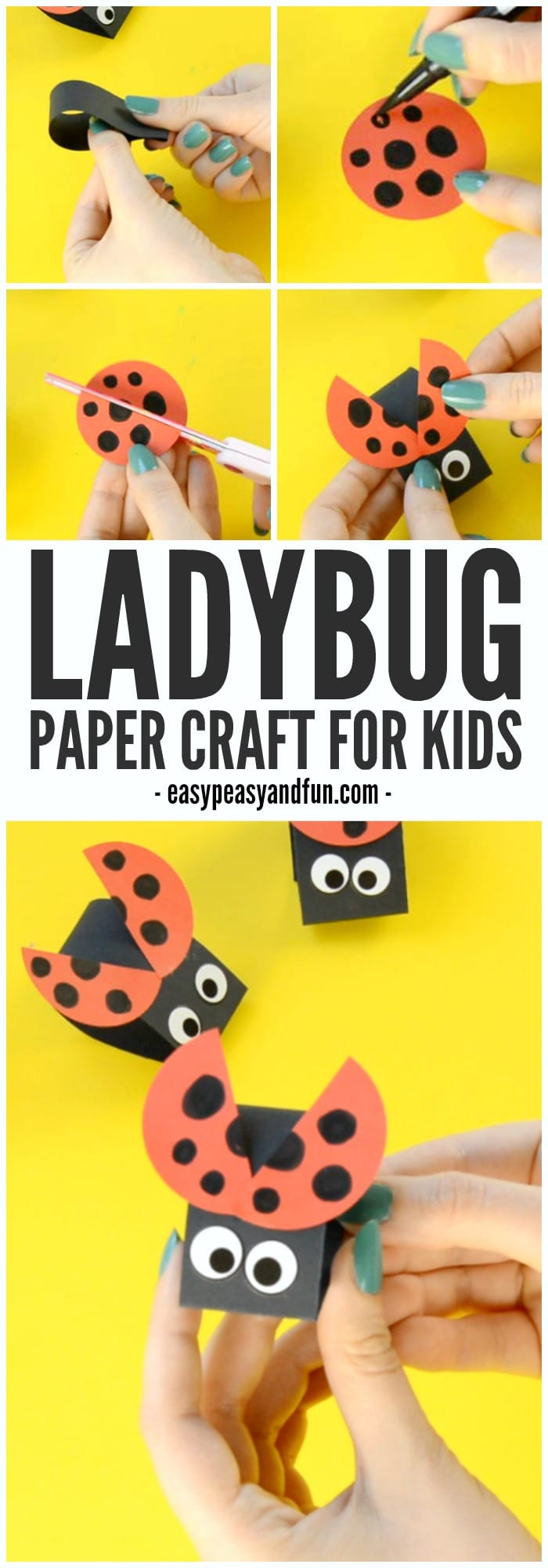 Cute Ladybug Paper Craft for Kids to Make