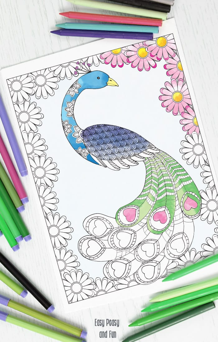 Love Peacock Coloring Page