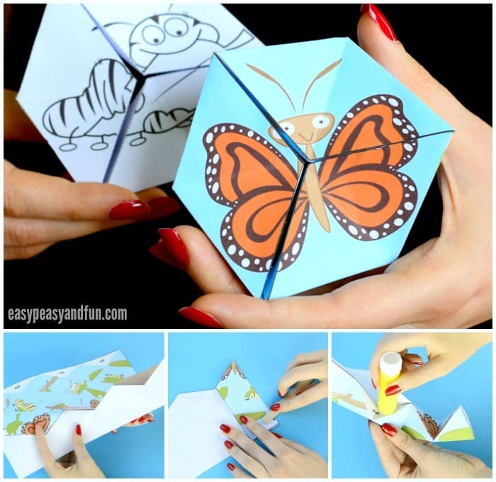 Cute Printable Butterfly Life Cycle Paper Toy