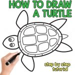 How to Draw a Turtle – Step by Step Drawing Tutorial