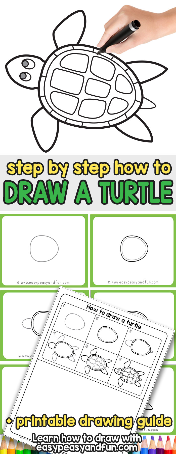 How to Draw a Turtle step by step tutorial for kids and beginners