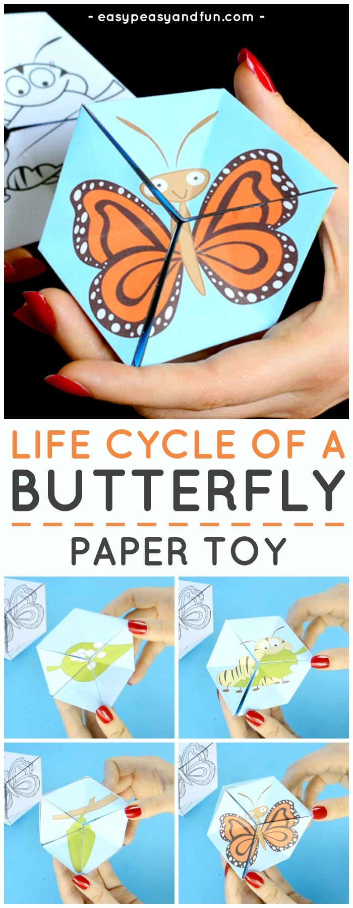 Butterfly Life Cycle Paper Toy