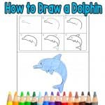 How to Draw a Dolphin Step by Step for Kids + Printable