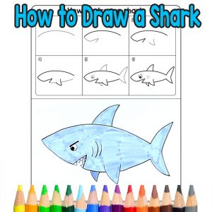 How To Draw Sea Animals Archives Easy Peasy And Fun