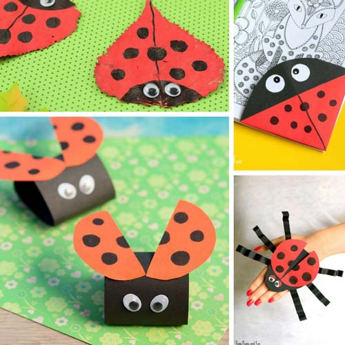 Ladybugs or Ladybirds