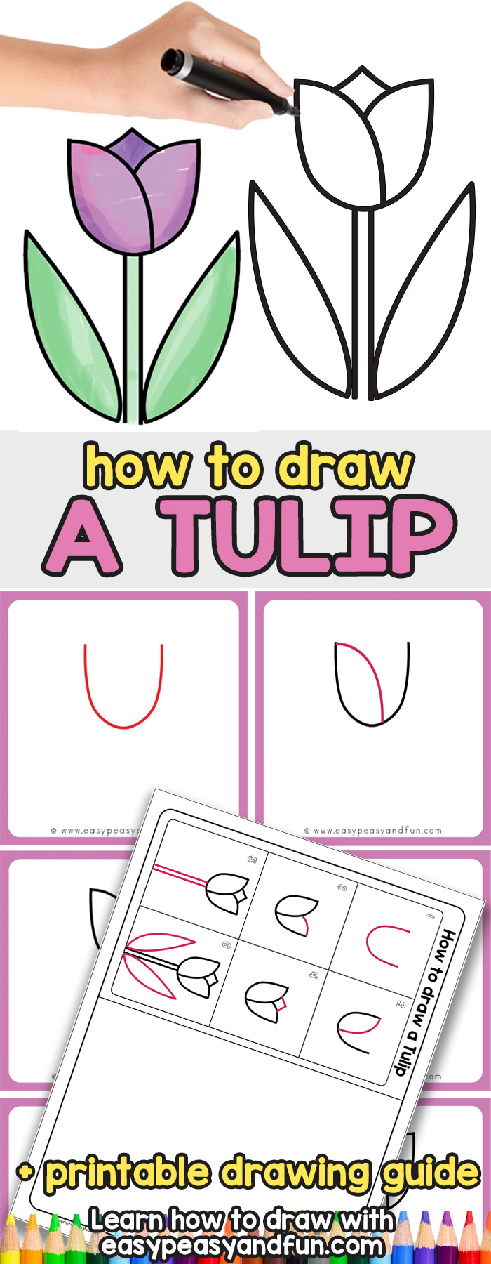 How to Draw a Tulip - Easy Step By Step Drawing Tutorial for Kids