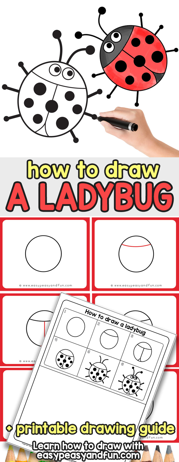 Learn How to Draw a Ladybug - Simple Step by Step Tutorial for Kids
