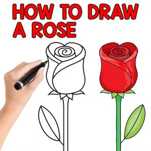 How to Draw a Rose – Easy Step by Step For Beginners and Kids