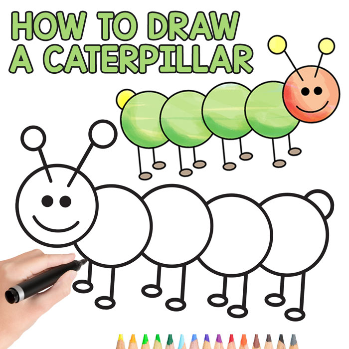 How To Draw A Caterpillar Step By Step Guide For Kids And