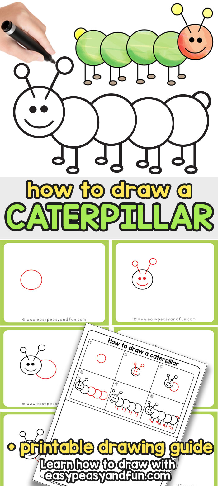 How to Draw a Caterpillar Step by Step Directed Drawing for Kids and Beginners