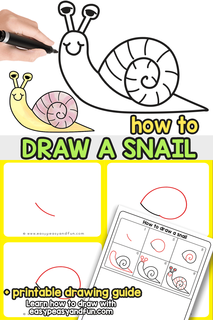 How to Draw a Snail - a simple step by step drawing tutorial that will teach you or your kids how to draw a cute cartoon like snail.
