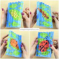 Ladybug Life Cycle Agamograph Template