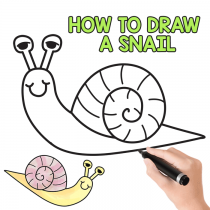 How to Draw a Snail (cute) – Easy Step by Step Tutorial