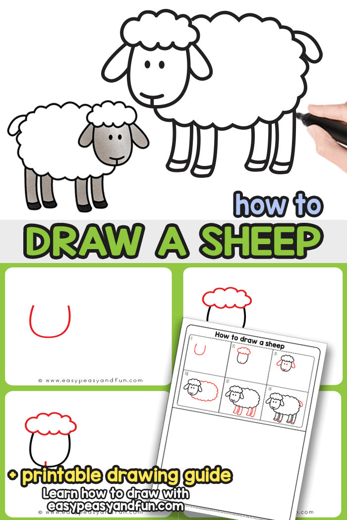 How to Draw a Sheep Step By Step Drawing Tutorial. This easy sheep drawing tutorial (with directed drawing printable) will have you learn how to draw a sheep in no time.