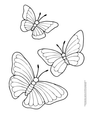 picture about Printable Butterfly Coloring Pages referred to as Butterfly Coloring Web pages - Totally free Printable - towards Lovable in the direction of