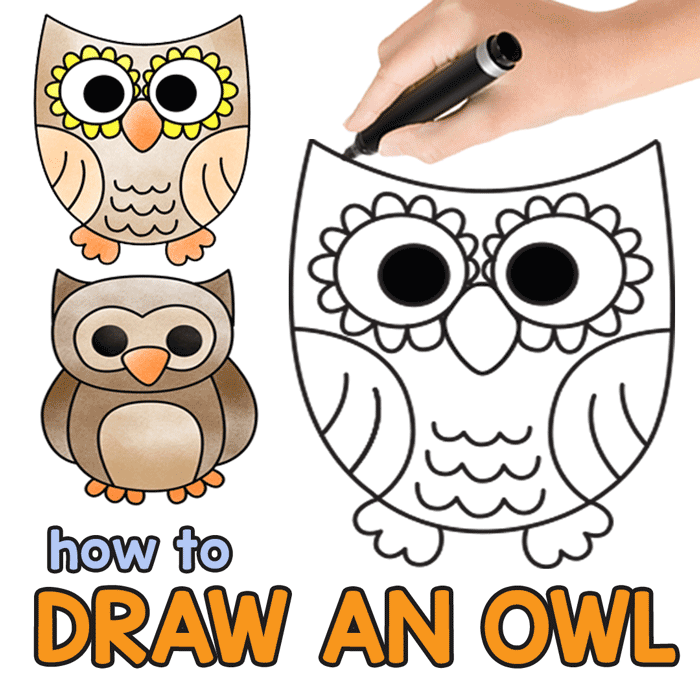Owl Guided Drawing Instructions