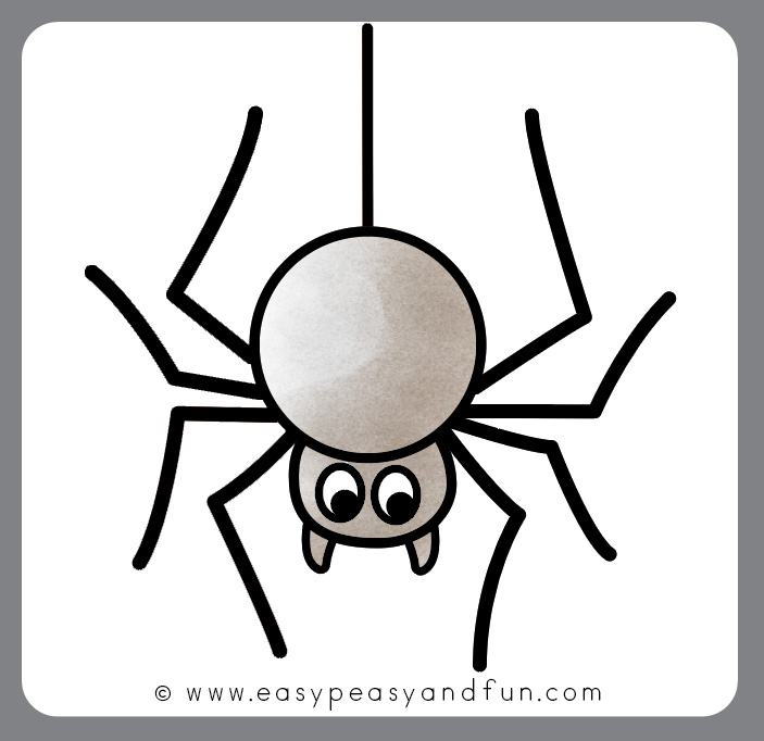 Drawing a Spider
