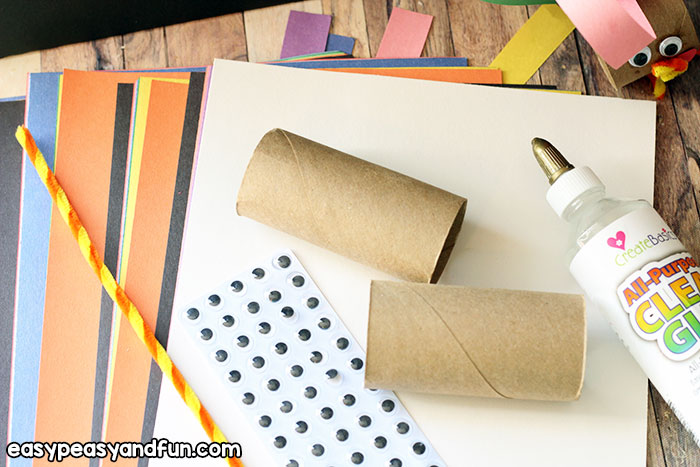 Material for Turkey TP Roll Craft
