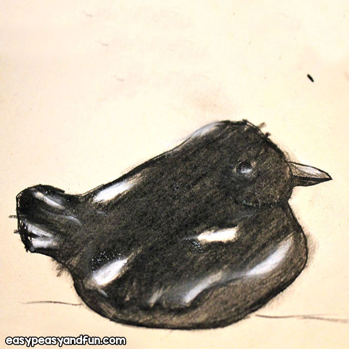 Charcoal Bird Drawing for Kids