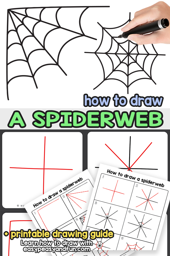 How to Draw a Spiderweb Step by Step Tutorial