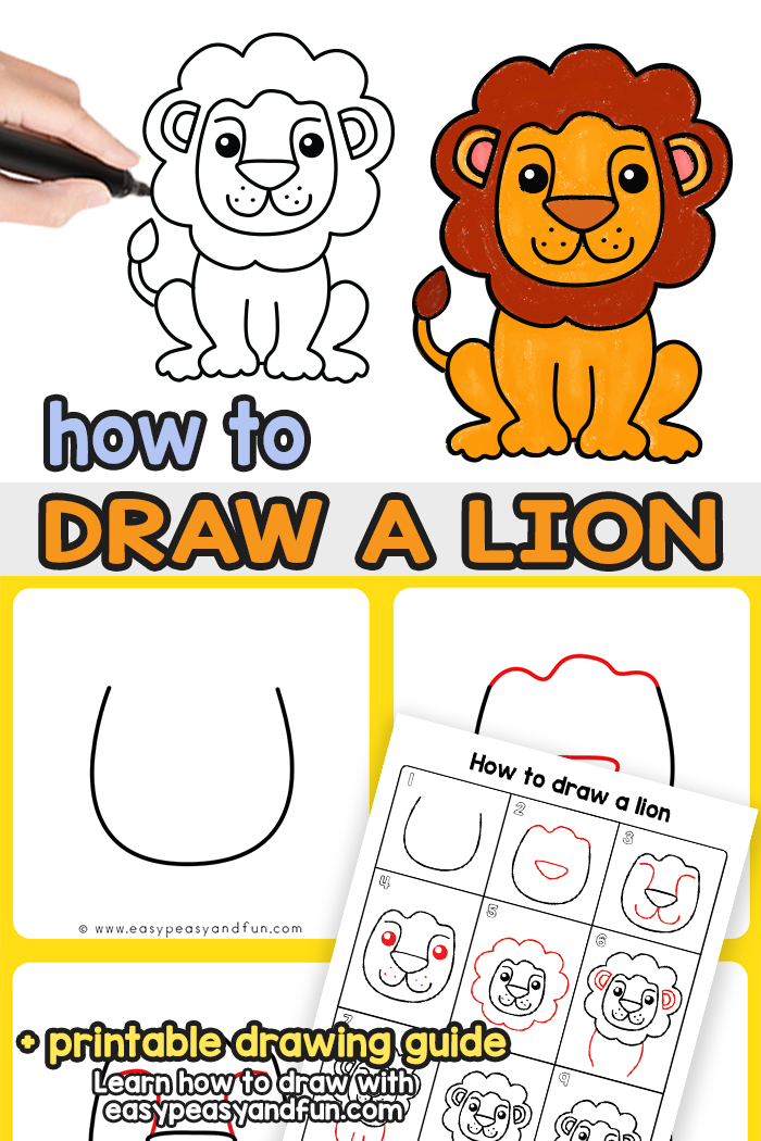 How to Draw a Lion Step by Step Tutorial