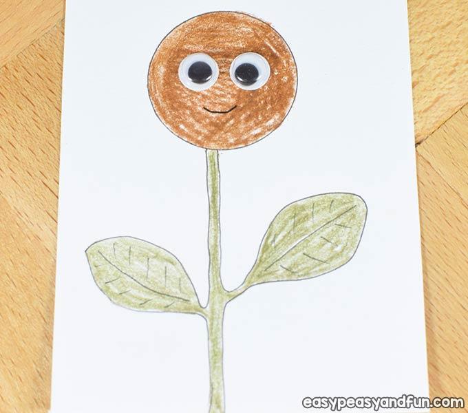 Sunflower - Step 2