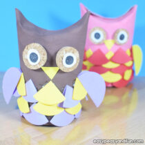Funky Toilet Paper Roll Owls