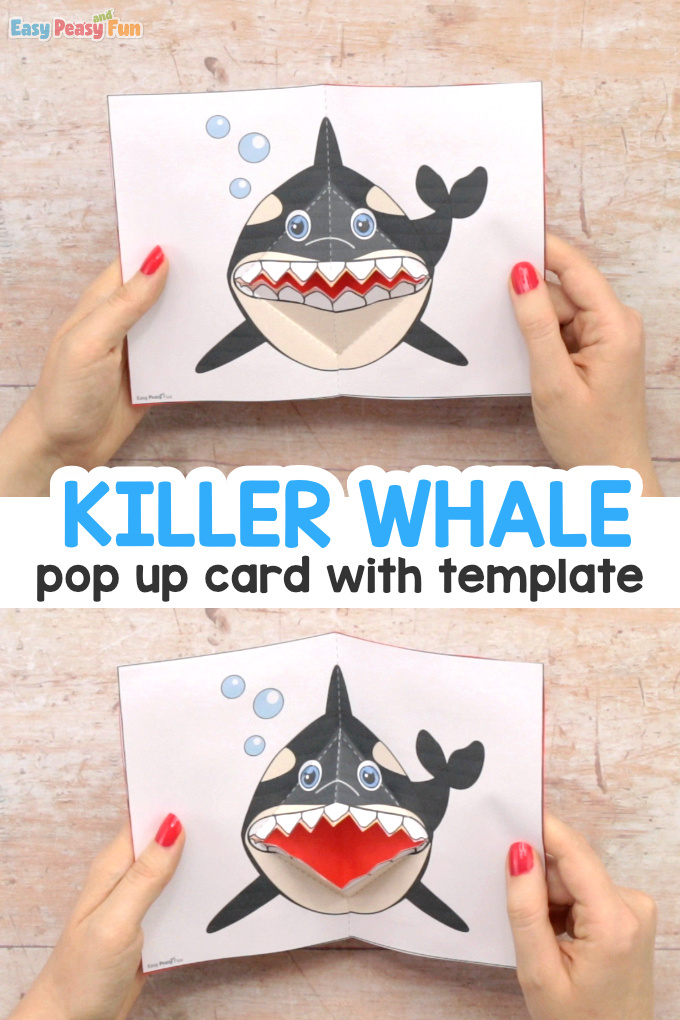 Killer Whale Pop Up Card Template Craft Idea for Kids