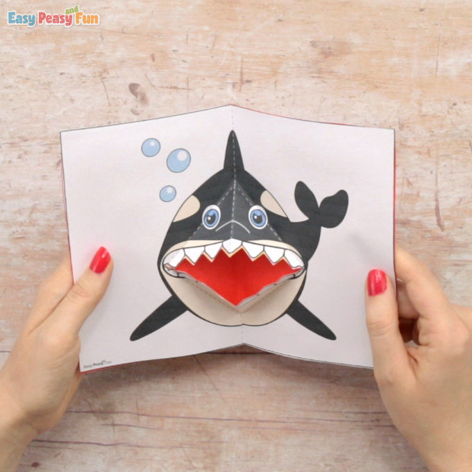 Killer Whale Pop Up Card Template Craft