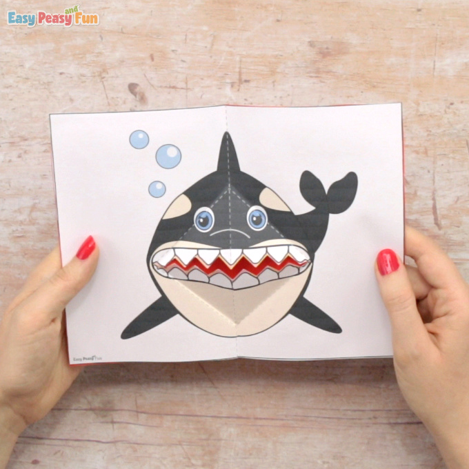 Killer Whale Pop Up Card Template