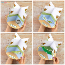 3D Frog Life Cycle Craft