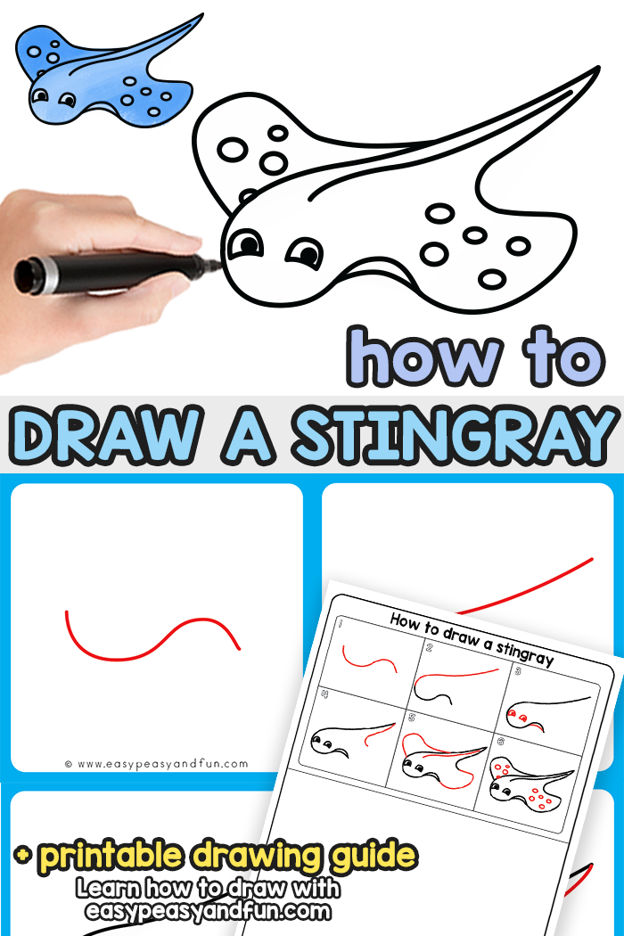 How to Draw a Stingray Step by Step Tutorial