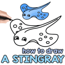 How to Draw a Stingray – Step by Step Drawing Tutorial