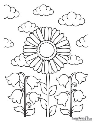Flower Coloring Pages - Sunflower