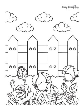 Roses in Garden Coloring Page
