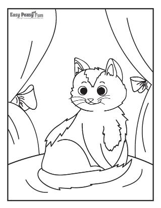 Lovely Cat Sitting