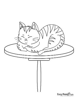 Sleeping on a Table