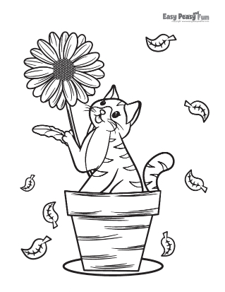 Cat Playing With a Flower