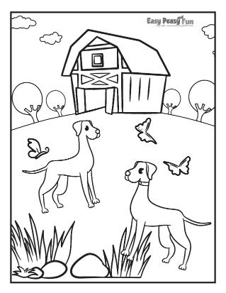 Outdoor Fun on a Farm